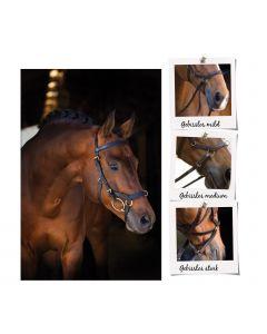 RAMBO® MICKLEM® Mulitbridle, Horseware