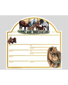 "Tafel ""Shetland-Pony"""