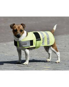 BUSSE Hundedecke SHINE