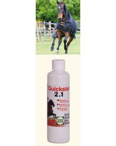 Stassek Waschmittel 250 ml  für Decken Quickstar 2.1